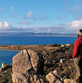 La Isla Stewart, Rakiura, el Santuario Dark Sky de Nueva Zelanda