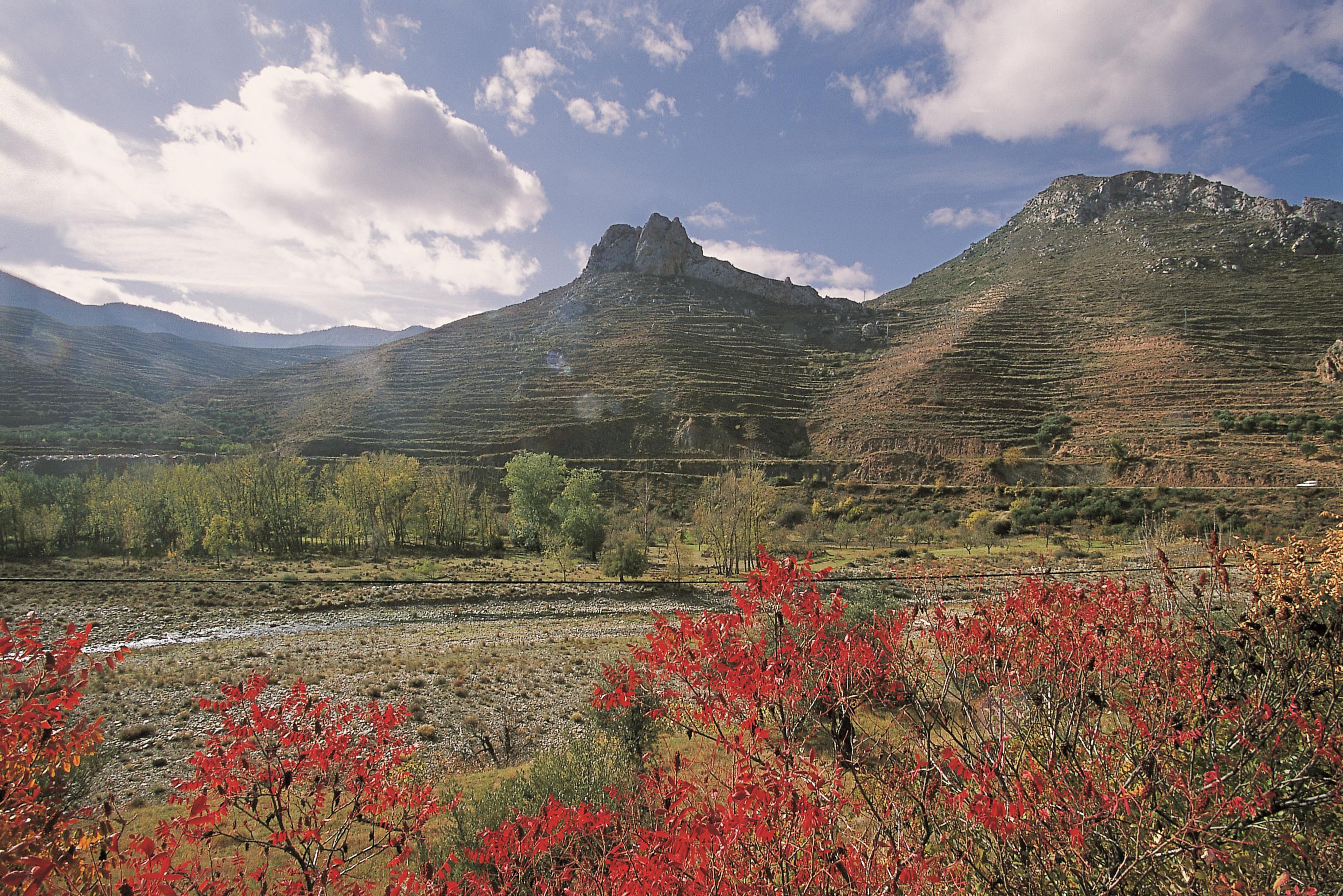Reserva de la biosfera Leza Jubera